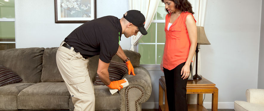 Murray, KY carpet upholstery cleaning